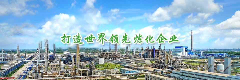 建设世界一流炼化一体化企业 世界级高端石油化工产业基地